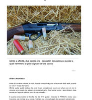 All4Shooters Franchi Affinity semiautomatico