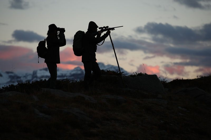 hunting rifles shotguns carabina da caccia Horizon Franchi fucili da caccia armi e tiro