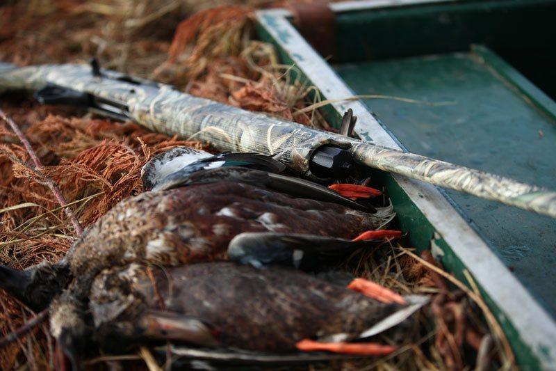 hunting shotgun caccia alle oche Franchi semiautomatico camo