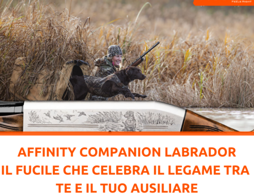 Il legame tra cacciatore e il suo ausiliare nell'Affinity Companion