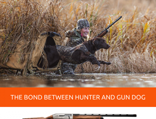 THE BOND BETWEEN HUNTER AND GUN DOG IN AFFINITY COMPANION LABRADOR