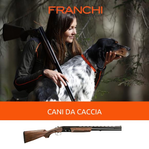 cani da caccia come scegliere il compagno di avventure