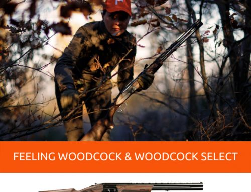SEIZE THE DAY WITH FEELING WOODCOCK AND FEELING WOODCOCK SELECT