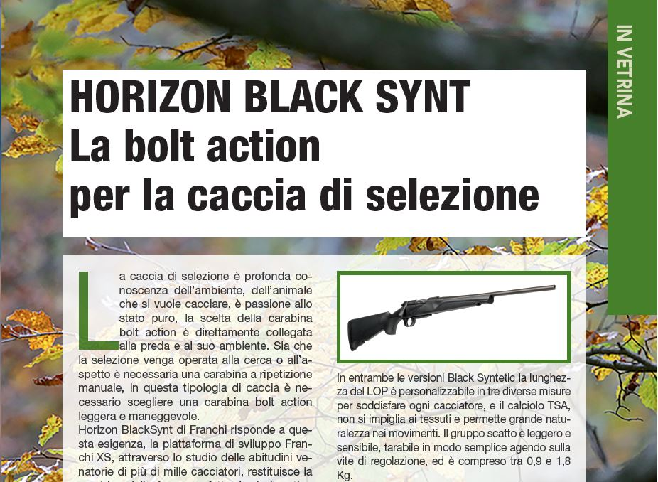 carabina bolt action