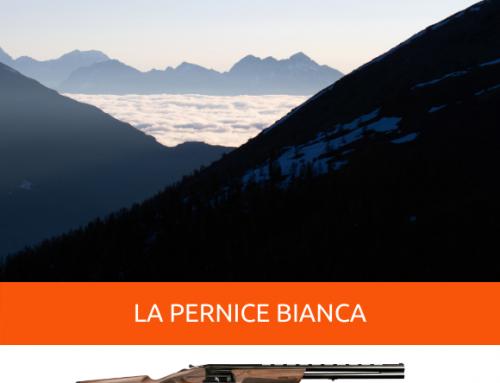 CACCIA ALLA PERNICE BIANCA, LA REGINA DELLE NEVI